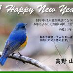 A HAPPY NEW YAER –2011.1.1–