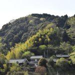 春の南海高野線—-車窓からの風景     —2016.4.15—