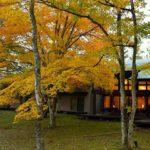 軽井沢-旧軽地域〜雲場池の紅葉=その❶    —2017.10.27—