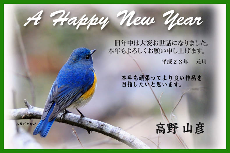 A HAPPY NEW YAER –2011.1.1–