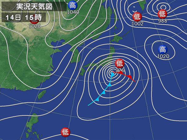 東京南部に大雪ーー小鳥たちは!?    —2013.1.15—