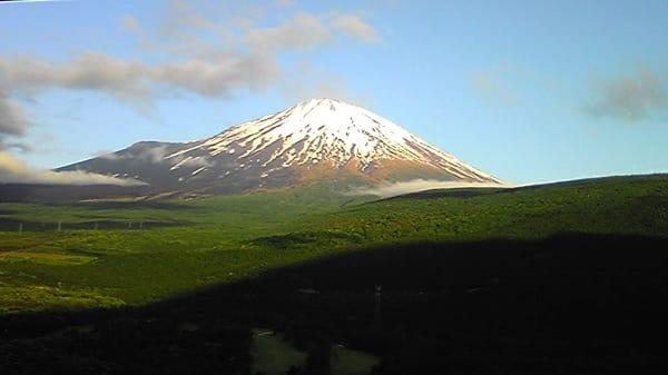 ノビタキとホオアカに会いに再び富士山麓へ仲間と・・・(番外編)