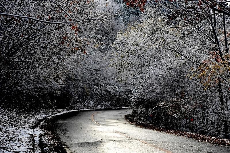 護摩壇山近辺の初雪     —2017.11.20—