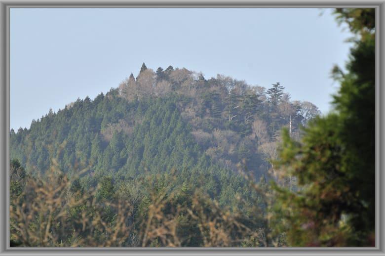高野三山(世界遺産)めぐりで遭った小鳥や風や風景など—11.5.4—