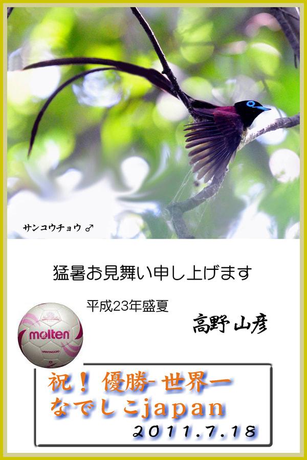 なでしこジャパン,世界一に輝いた朝!—11.7.18—